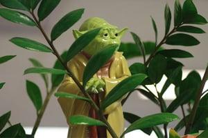 Yoda-Video-For-Agencies