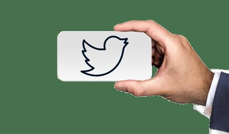 twitter-bird-icon
